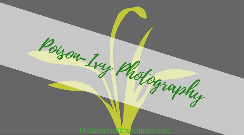 Poison-Ivy Photography(1)