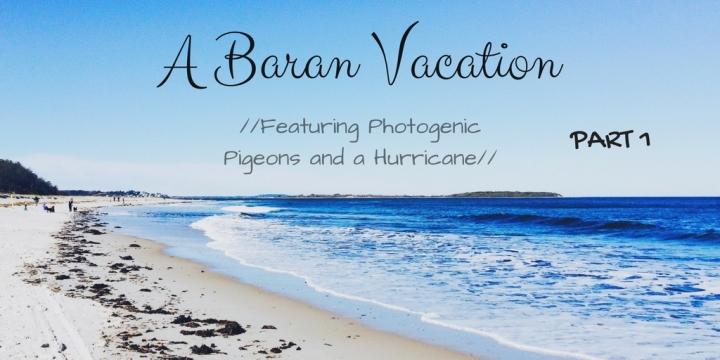 A Baran Vacation