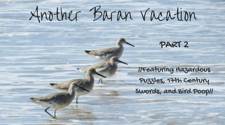 Another Baran Vacation part 2