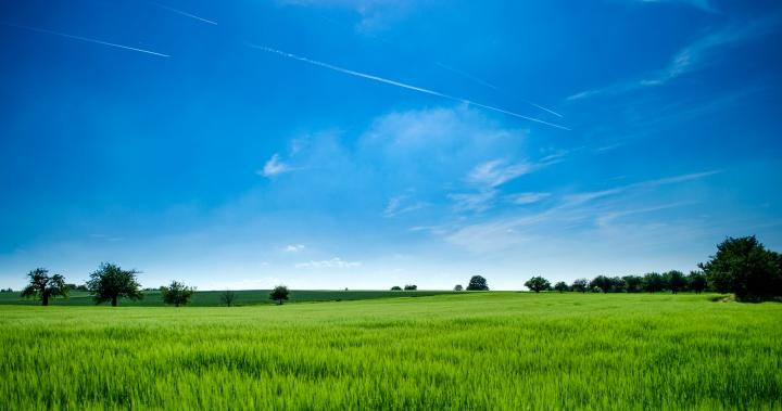 Blue Sky Tag (AKA me rambling aboutmyself)