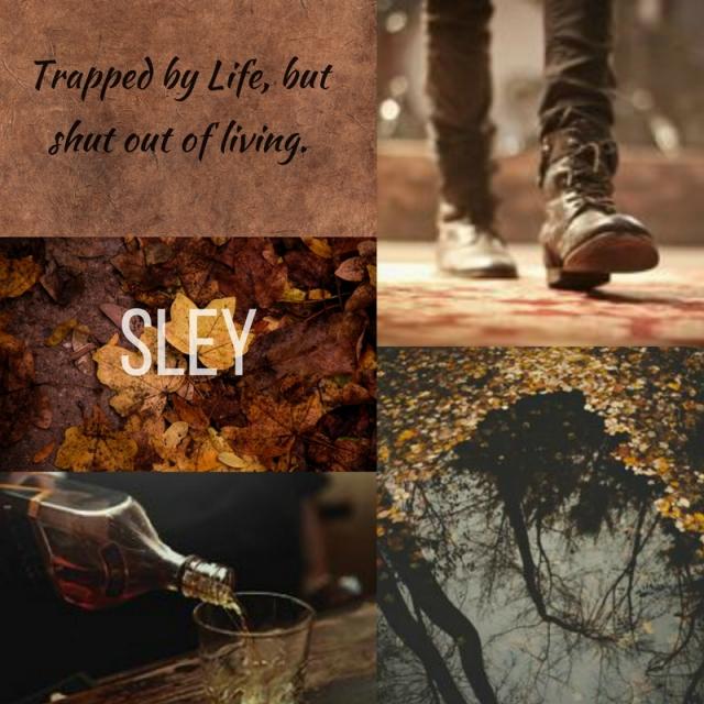 Sley(1(1)